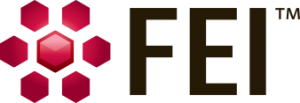FEICurrentLogo